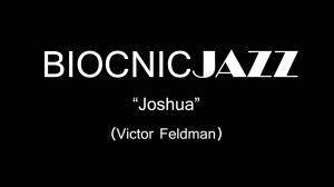 Joshua Victor Feldman